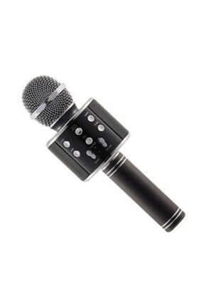 Wster Profesyonel Karaokemikrofon