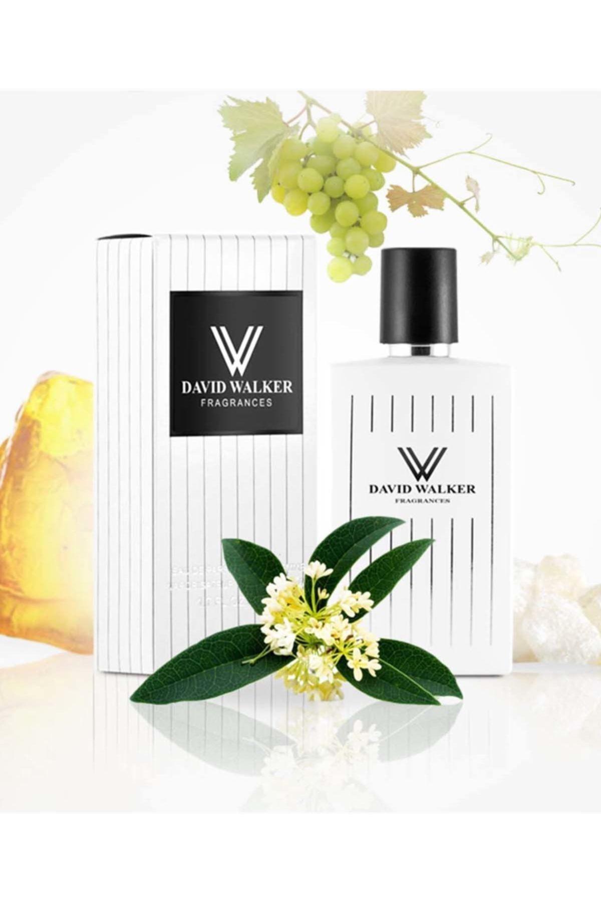 David Walker Pıllyrea B43 50ml Meyve Kadın Parfüm 1