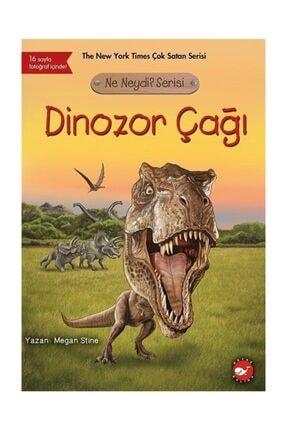 Beyaz Balina Yayınları Dinozor Çağı / Ne Neydi? Serisi