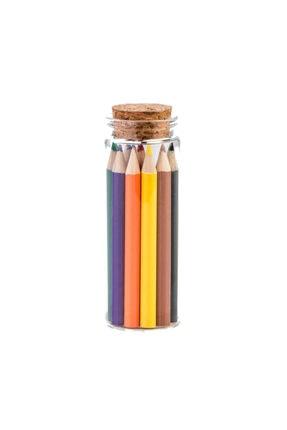 Legami Kurşun Kalem Tüpte 12 Renk K065910