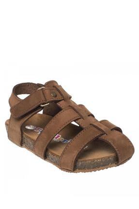 Toddler Tarçın Rengi Erkek Çocuk Sandalet 331 4676B