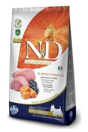 N&D Tahılsız Balkabaklı Kuzu Etli Küçük Irk Köpek Maması 2,5 kg