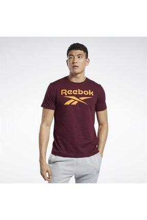 Reebok Rı Big Logo Tee Erkek Tişört
