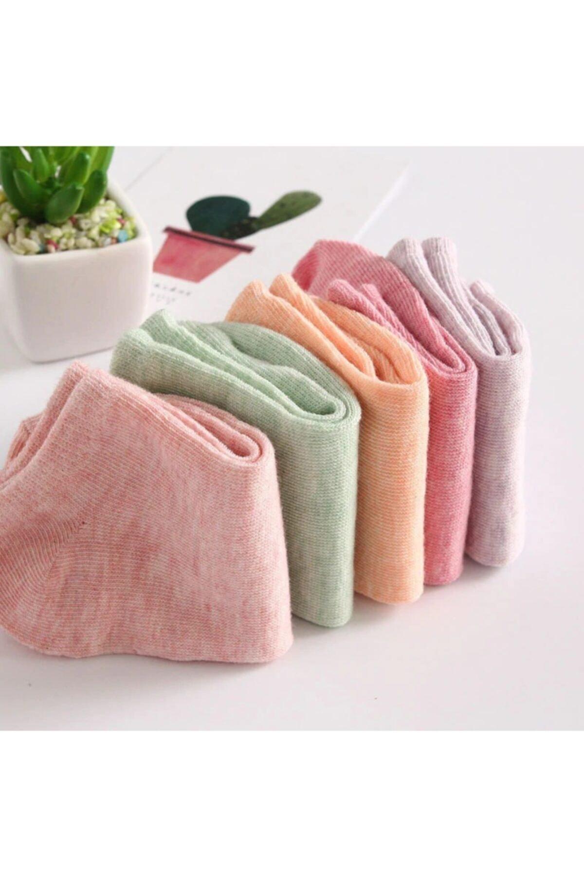 çorapmanya Kadın 12 Çift Koton Ekonomik Karışık Soft Renkler  Patik Çorap 2