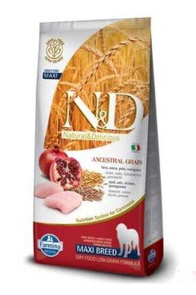 N&D Ancestral Graın Tavuk Buğday Nar Adult Med.maxi Köpek 12+3 kg
