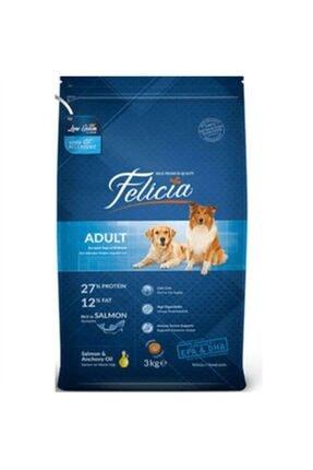 Felicia Somon Balıklı Düşük Tahıllı Hipoalerjenik Köpek Maması 15 Kg