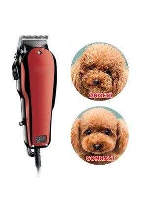 yopigo PET CUT X-05 Kedi Traş Seti Evcil Köpek Tıraş Makinesi Tüy Kesme