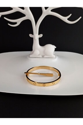 PUCCA AKSESUAR Cartier Love Vidalı Bileklik