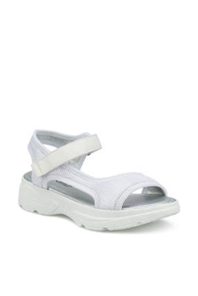 Polaris 315501.Z Beyaz Kadın Sandalet 100507782