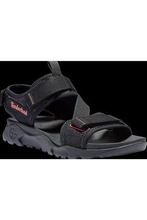 Timberland Erkek Sandalet