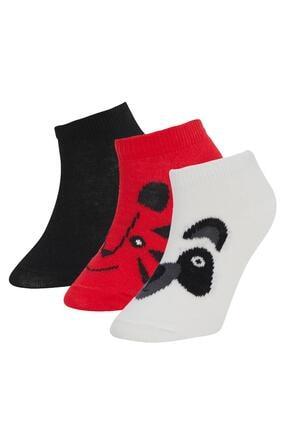 DeFacto Erkek Çocuk Desenli 3'lü Patik Çorap