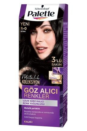 Palette Göz Alıcı Renkler 1.0 Siyah Saç Boyası