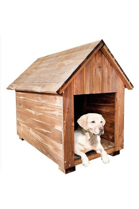 Weblonya Köpek Kulübesi Ahşap Köpek Evi Köpek Yuvası 2024