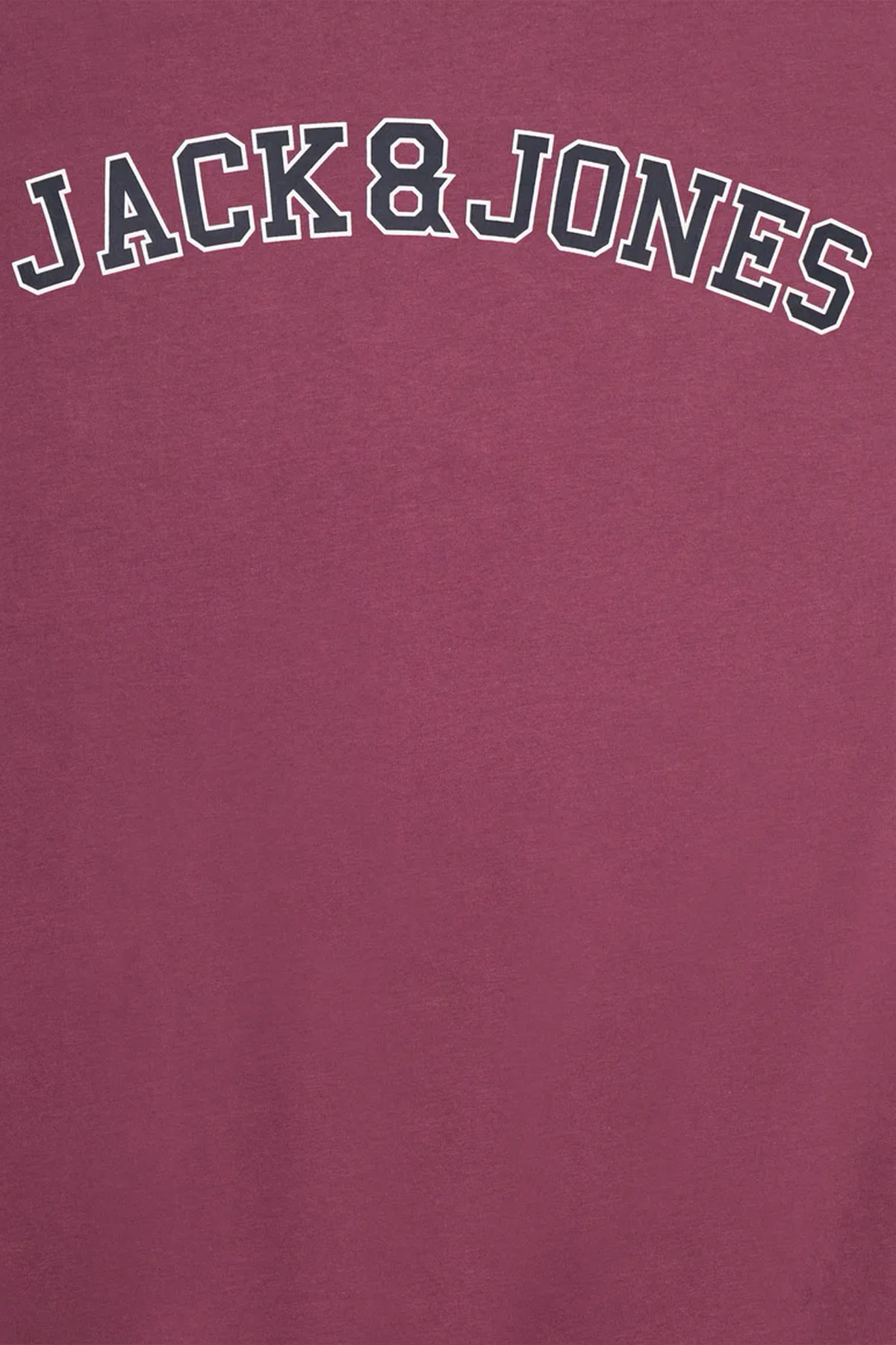 Jack & Jones Erkek Tshırt 2
