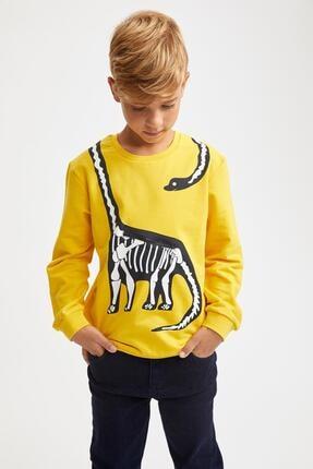 DeFacto Erkek Çocuk Dinozor Baskılı Fermuar Detaylı Sweatshirt