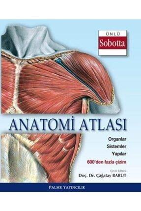 Palme Yayıncılık - Akademik Kitaplar Anatomi Atlası (sobotta Çizimleri)