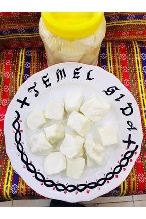 TEMEL GIDA Antep Peyniri Keçi Peyniri Yarım Kg
