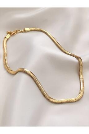 The Y Jewelry Kadın Gold İtalyan Zincir Kolye
