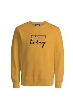 Jack & Jones Erkek Sarı Sweatshirt