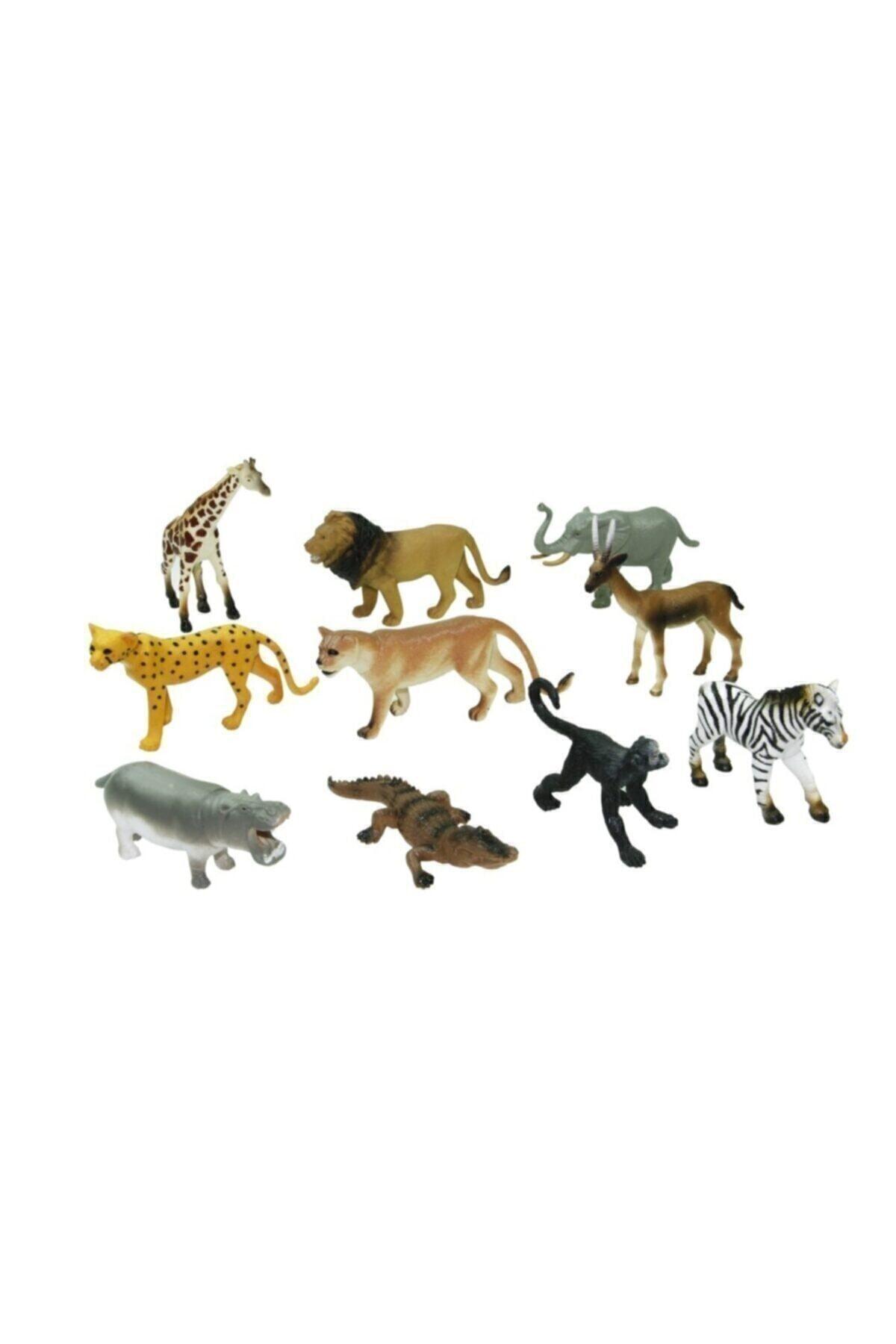 Vardem Kutulu 10 Parça Hayvan Seti Vahşi Hayvanlar 1