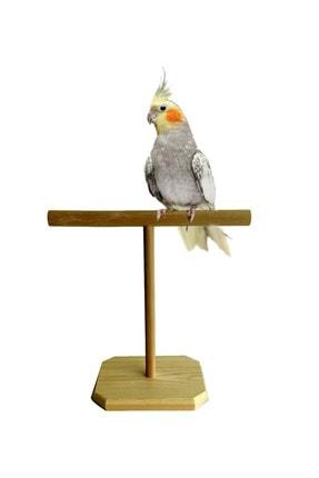 ULDEMART Ahşap Papağan Tüneği T Tünek