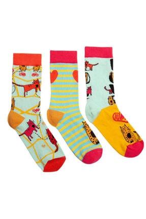 Biggdesign Cats Kadın Soket Çorap Seti