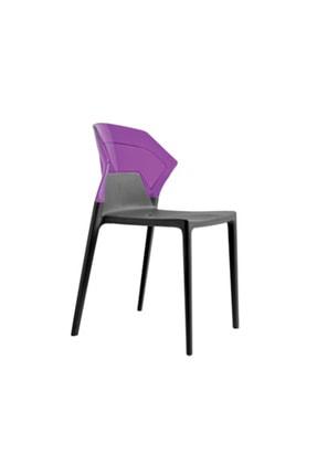 Papatya Ego-s Plastik Sandalye Polikarbonat Sırt Gaz Enjeksiyonlu Cam Elyaflı Pp Gövde
