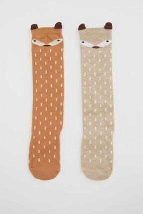 DeFacto Kız Bebek Desenli  Soket Çorap 2'li