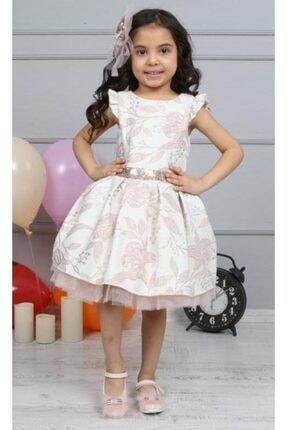 Riccotarz Kız Çocuk Çiçek Işlemeli Tütülü Pudra Elbise