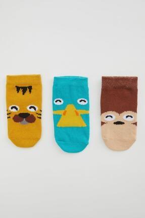 DeFacto Erkek Bebek Desenli Soket Çorap 3'lü