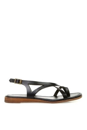 Greyder Kadın Sandalet
