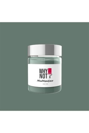 WHY NOT Whynot? Focus On Multisurface Kendinden Vernikli Akrilik Boya