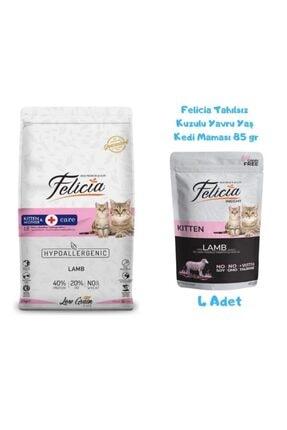 Felicia Kitten Kuzulu Yavru Kedi Maması 2 Kg + Yaş Mama 85 Gr (4 Adet)