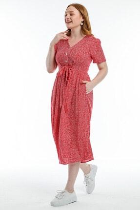 Pitti Kadın Kırmızı Elbise