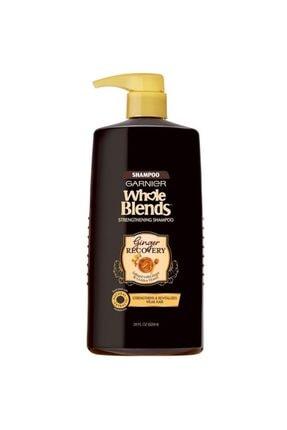 Garnier Whole Blends Zencefil Özlü Güçlendirici Şampuan 828ml