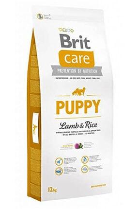 Brit Care Kuzu Etli Yavru Köpek Maması 12 Kg