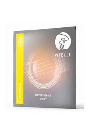 Guitar Pitbull Strings Scg Nt 0280-043 Klasik Gitar Teli Ve Pena