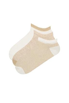 Penti Patik Çorap  3lü