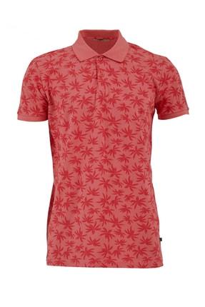 Ltb Erkek  Pembe Polo Yaka T-Shirt 012208430760890000