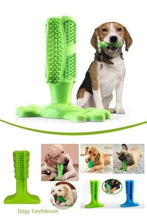 TİNEKE Köpek Diş Temizleyici Oyuncak Diş Kaşıyıcı Küçük Boy M Diş Fırçası