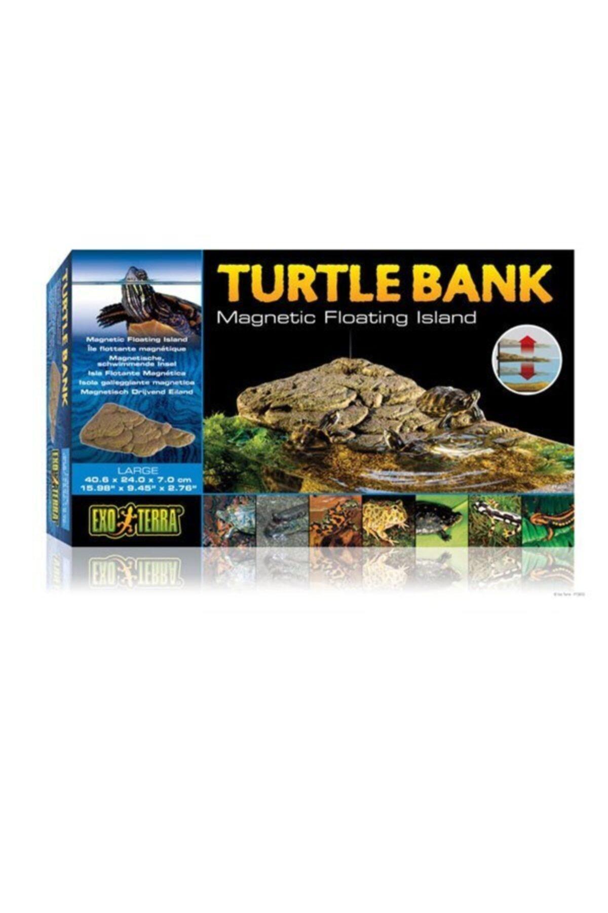 Exo Terra Kaplumbağa Adası 1