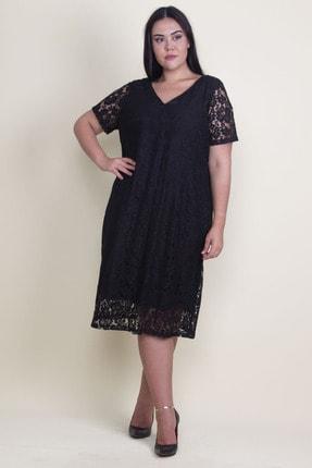 Şans Kadın Siyah V Yaka Astarlı Dantel Elbise 65N18221