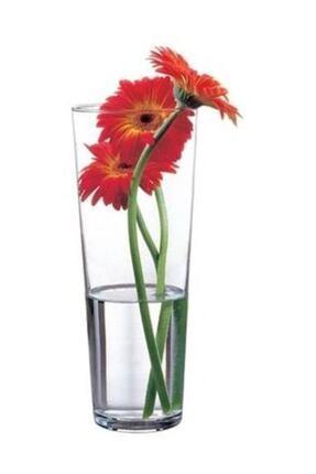 Paşabahçe Flora Vazo 43177