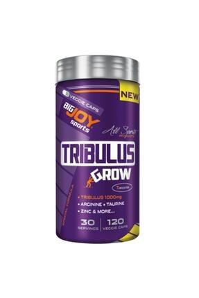 Big Joy Bigjoy Tribulus Grw 120 Kapsül 30 Servisli