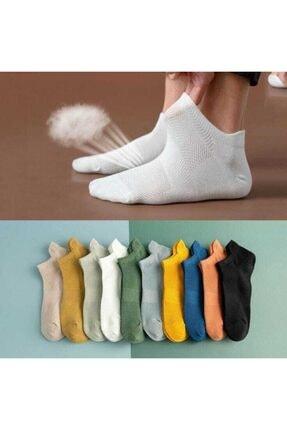 Çoraphane Patik Çorap Karışık Renkli 10 Çift