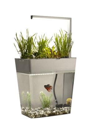 Dopagu Aqua Garden Kendi Kendini Temizleyebilen Ledli Akıllı Akvaryum 9 Litre