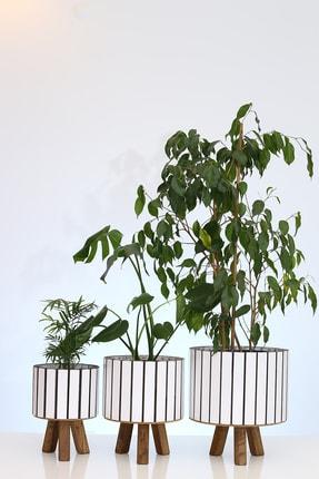 Hakan Mobilya Beyaz Ahşap Ayaklı Yuvarlak 3'lü Saksı Seti Dekoratif Çiçeklik Balkon Bahçe Aksesuarı