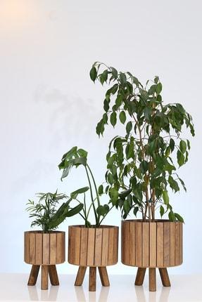 Hakan Mobilya Çam Rengi Ahşap Ayaklı 3'lü Yuvarlak Saksı Standı Seti Dekoratif Çiçeklik Balkon Bahçe Saksılık