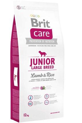 Brit Care E Junıor Large Breed Lamb & Rice 12 Kg