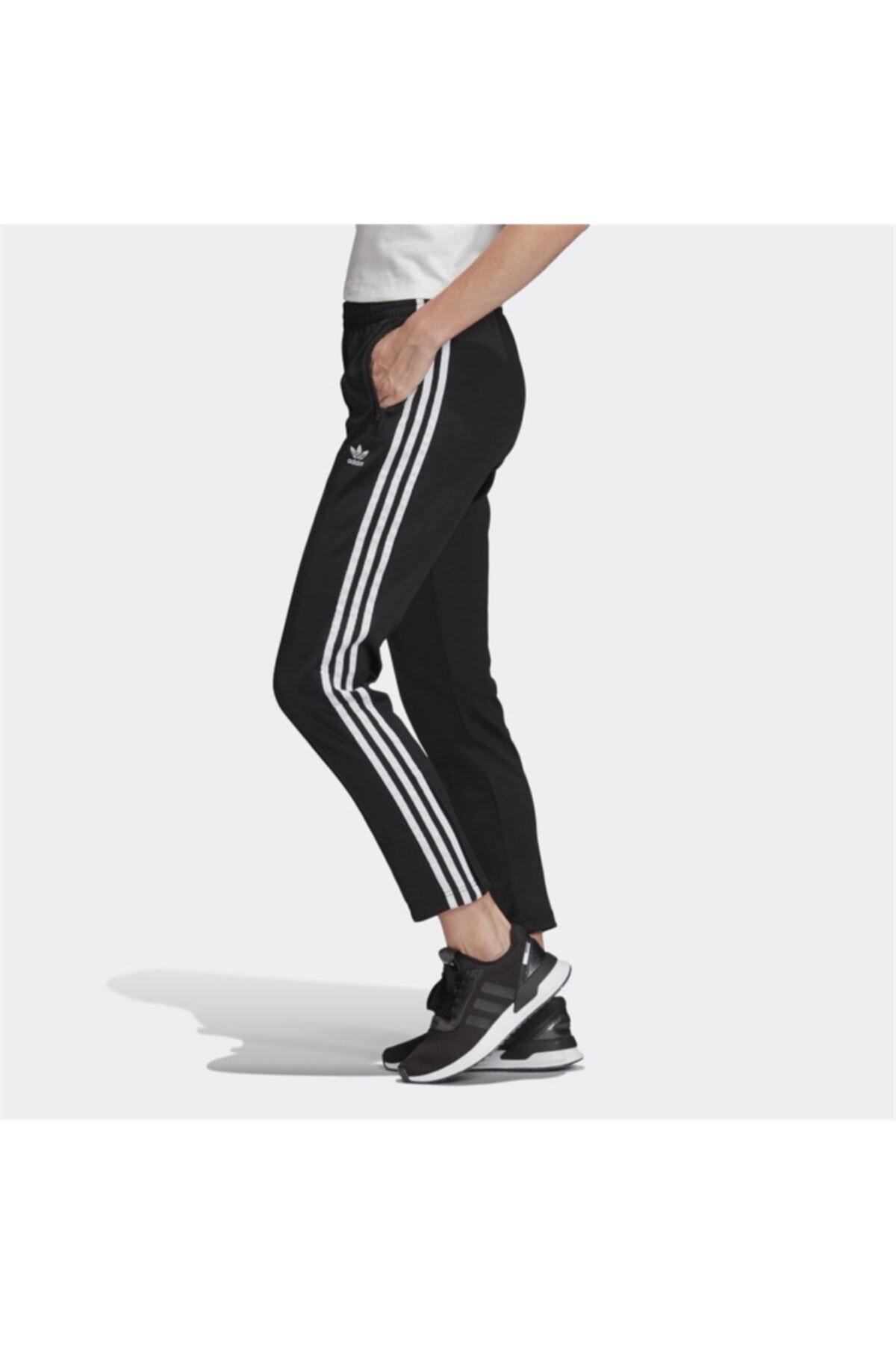 adidas SS TP Kadın Eşofman Altı 2